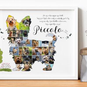 Egyedi yorkie Yorkshire terrier fotókollázs, személyre szóó kutyus kutya poszter, fényképes fotós ajándék, születésnapra, szülinapra kutyák szerelmeseinek, kutyabarát